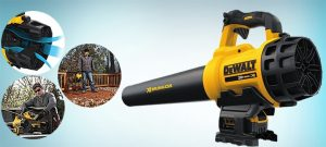 Best Leaf Blower Reviews: Best Battery Operated Cordless Leaf Blower For Drying Your Car