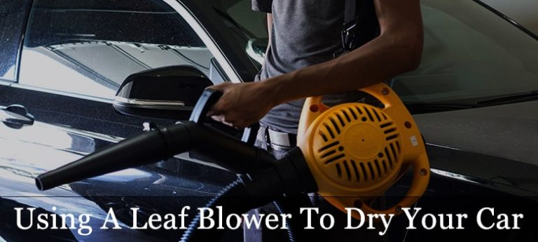 10 Best Leaf Blower Reviews: Best Battery Operated Cordless Leaf Blower For Drying Your Car